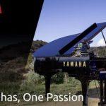 ヤバすぎるスキル|MXGP ジェレミー・シーワー「驚嘆ピアノスキル」@ MXコース